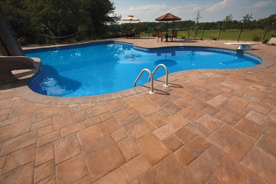 Backyard Pool with Stone Patio